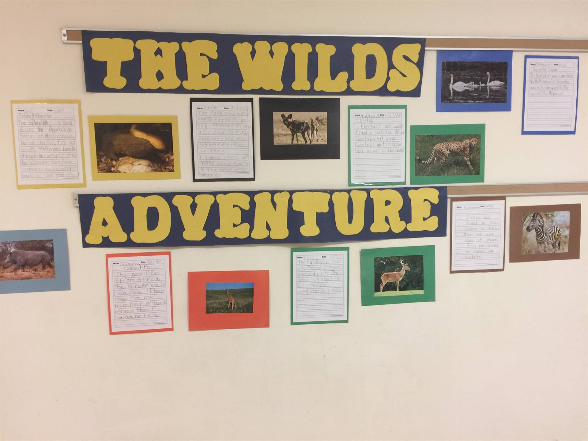 "Writing about ""The Wilds"" fieldtrip."
