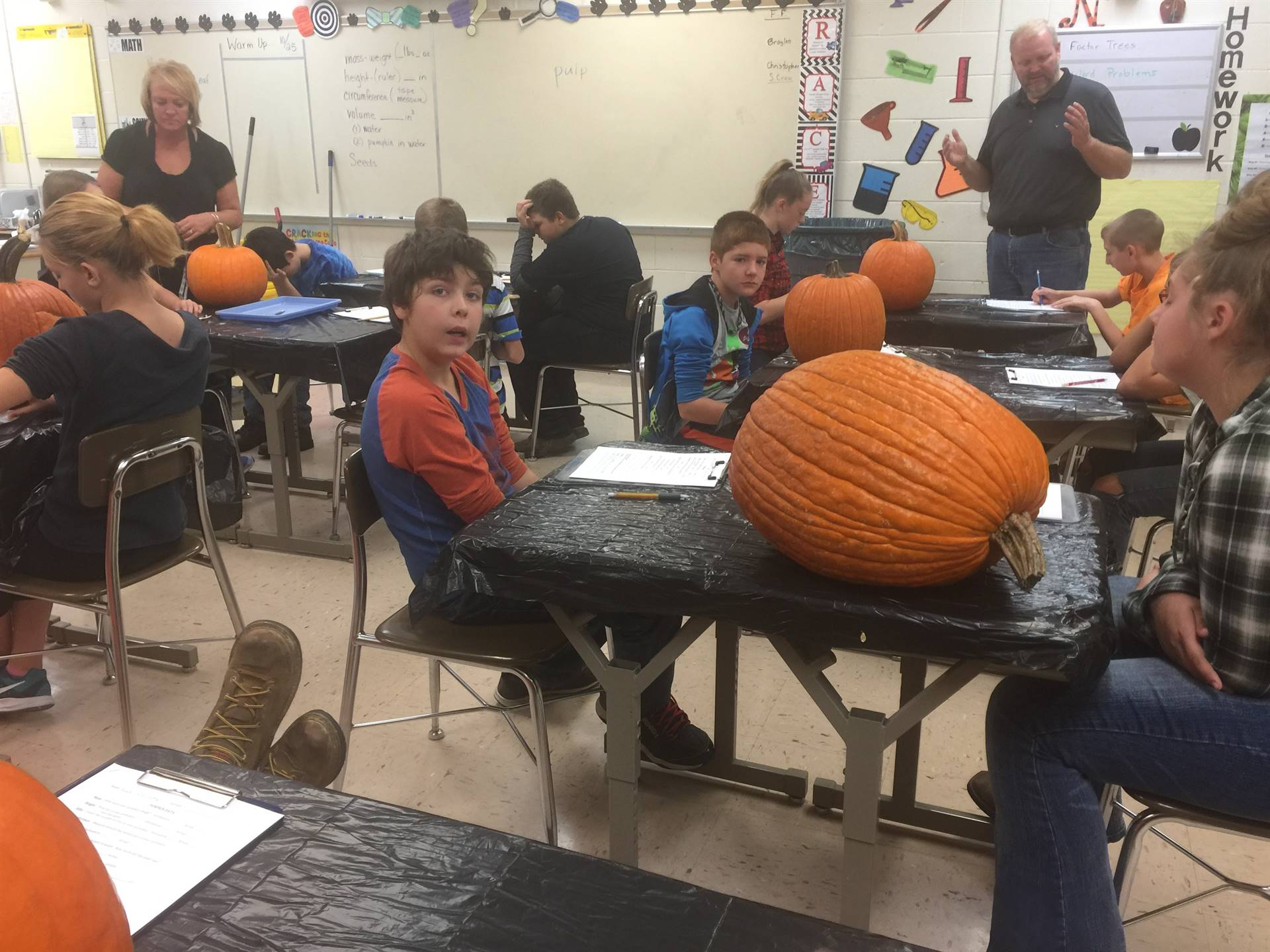 6th Grade Pumpkin Math Project