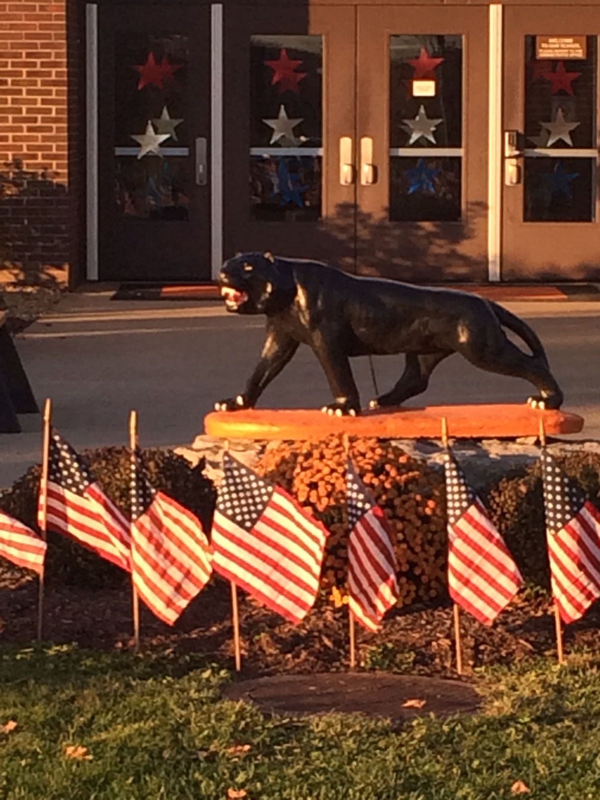 Honoring our Veterans for Veteran's Day