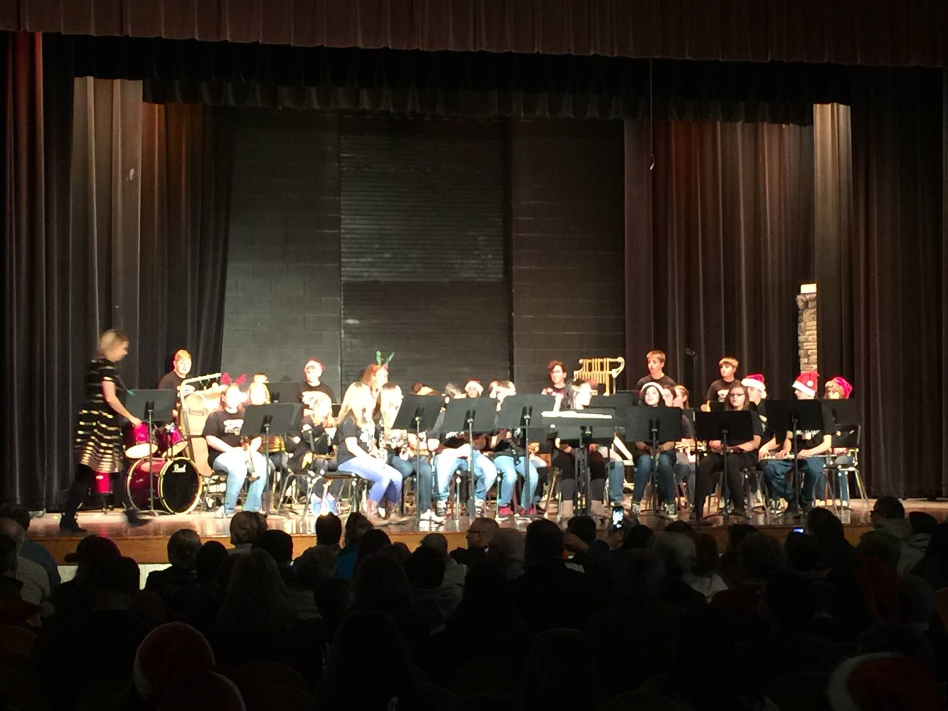 NLMS Band performing at the 2017 Holiday Concert