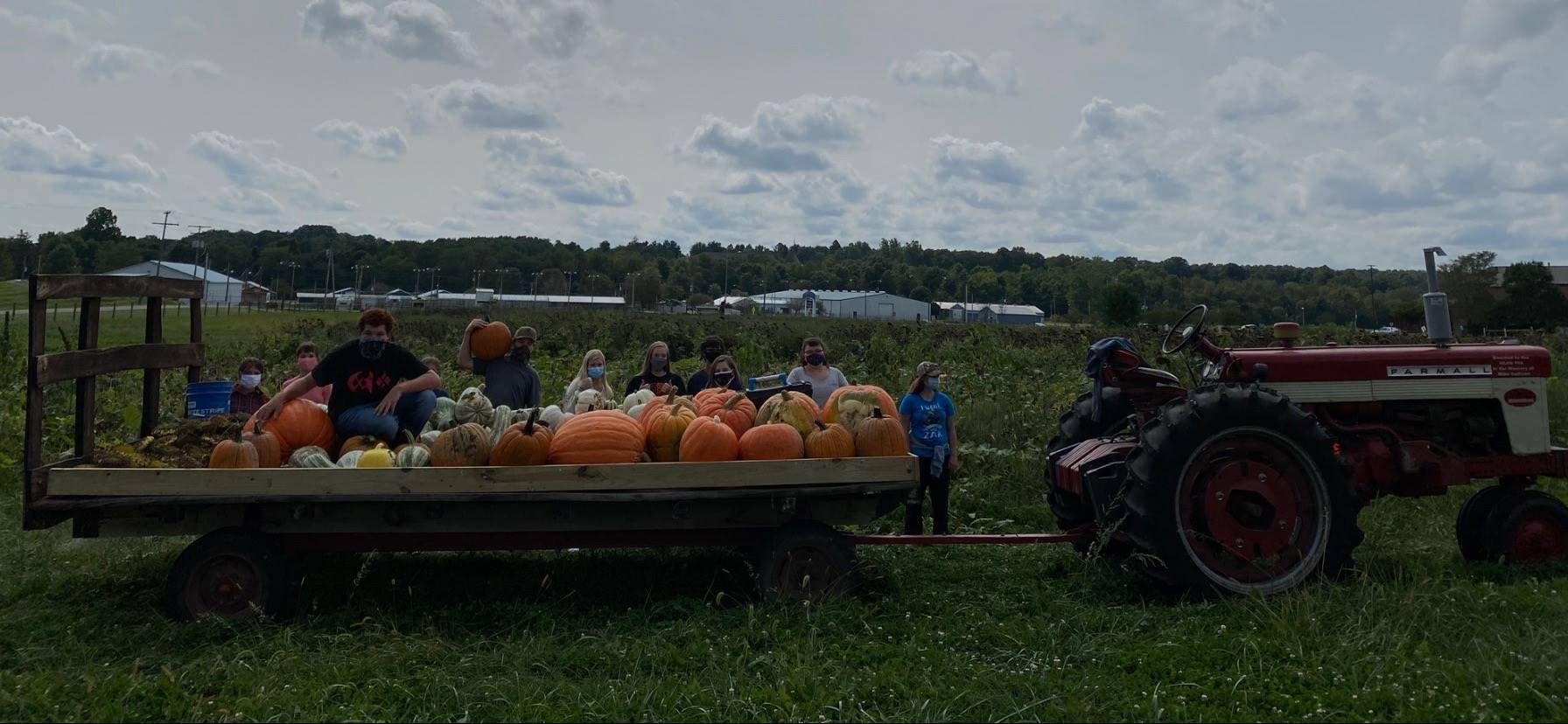 FFA Pumpkin Harvest